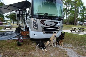 Click image for larger version  Name:Challenger - Dogs.jpg Views:272 Size:215.6 KB ID:1168