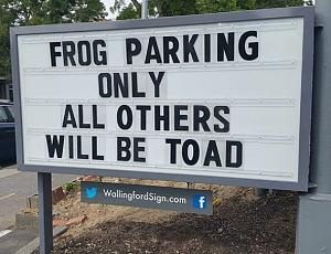 Click image for larger version  Name:all others toad.jpg Views:70 Size:174.5 KB ID:12129