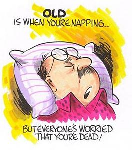 Click image for larger version  Name:Napping.jpg Views:135 Size:73.9 KB ID:12950