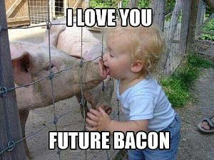 Click image for larger version  Name:Future Bacon.jpg Views:70 Size:179.0 KB ID:14329