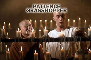 Click image for larger version  Name:patience_grasshopper.jpg Views:44 Size:76.7 KB ID:14734