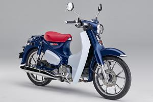 Click image for larger version  Name:2019_Gallery_SuperCub_06.jpg Views:108 Size:94.2 KB ID:17124