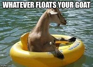Click image for larger version  Name:Floating Your Goat.jpg Views:73 Size:149.2 KB ID:25160