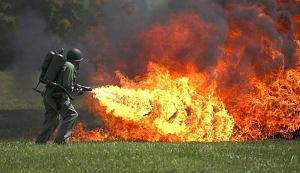 Click image for larger version  Name:Flamethrower.jpg Views:15 Size:227.5 KB ID:25701