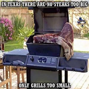 Click image for larger version  Name:Small Grill.jpg Views:20 Size:34.9 KB ID:28002