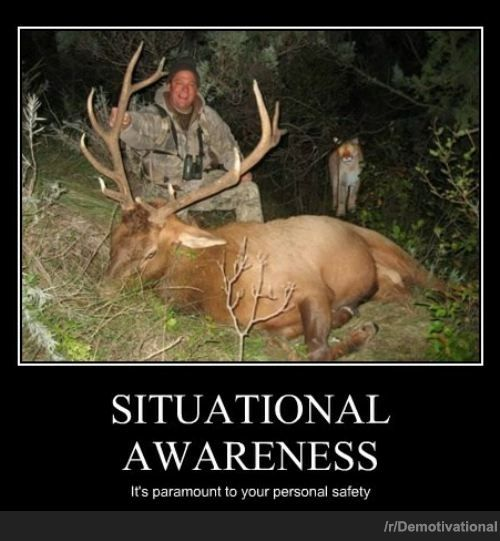Click image for larger version  Name:Situational Awareness.jpg Views:46 Size:45.4 KB ID:7147