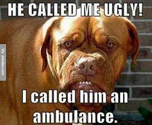 Click image for larger version  Name:He-called-me-ugly---dog-meme.jpg Views:73 Size:204.3 KB ID:8060