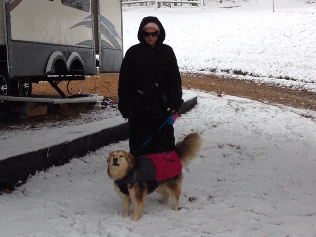 Click image for larger version  Name:Marta in snow.JPG Views:256 Size:104.3 KB ID:837